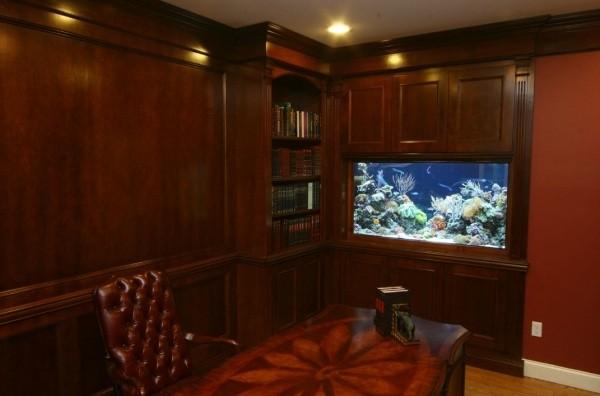 办公室鱼缸放置位置_办公室鱼缸放几条鱼_鱼缸养几条鱼好风水鱼_