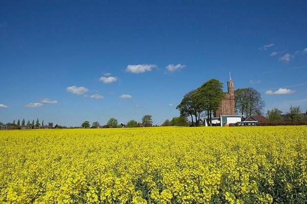 复古家居英国废弃水塔改建住宅