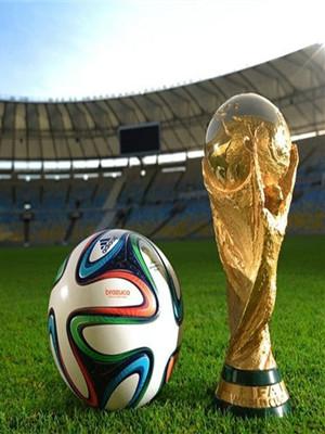 世界杯营销 电商能做什么?