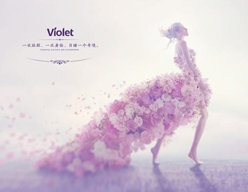 紫罗兰•诗人的灵魂:爱,就是纯粹、干净