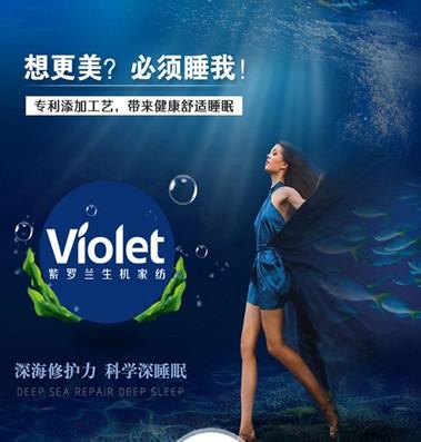紫罗兰:融汇深海灵气,拥抱自然之美