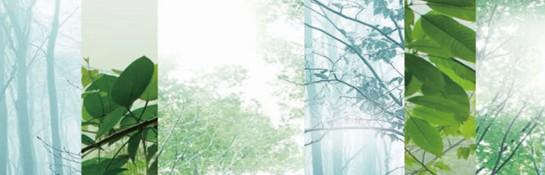 紫罗兰生机家纺:在巴马原生态山谷湖水间-寻一场轻梦