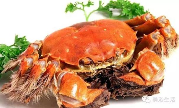 美浴生活:好伟大的大闸蟹!蟹黄可食,蟹券可售,蟹壳可以造毛巾!