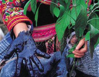睡康宁家纺天然植物印染工艺