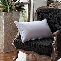 凯盛家纺羽绒枕产品图片展示
